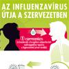 Így terjed az influenza