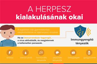 A herpesz kialakulásának okai (infografika)
