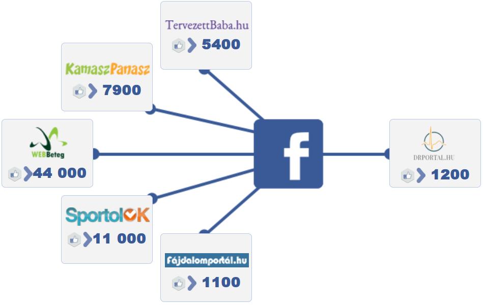 Közösségi média grafikonok